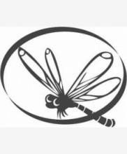 Интернет-портал «Выходной»